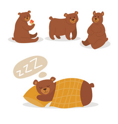 cartoon bear character teddy pose set wild vector image