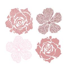 flowers set flowers vector image