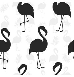 Beautiful seamless pattern flamingo silhouette vector