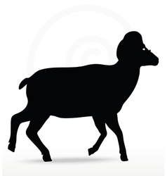Big horn sheep silhouette in walking pose vector