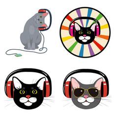 cat in music headphones vector image