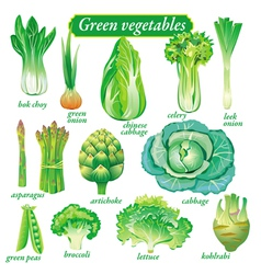 Green vegetables vector