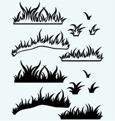 Silhouette grass vector