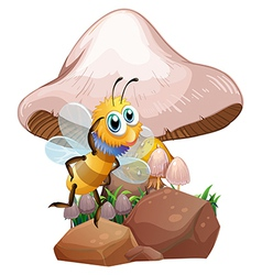 A bee near the mushrooms vector image