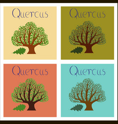 Assembly of flat plant quercus vector