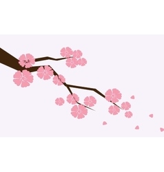 Branch of sakura with flowers Cherry blossom vector image