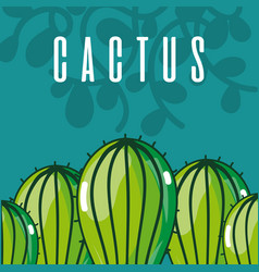 cactus green plant concept vector image