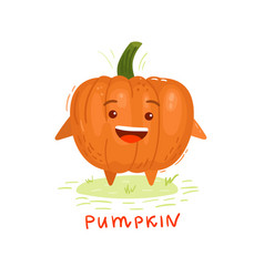 colorful pumpkin vector image