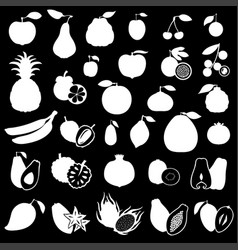 Fruits set image on black background vector
