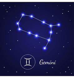 Gemini Zodiac Sign Stars on the Cosmic Sky vector