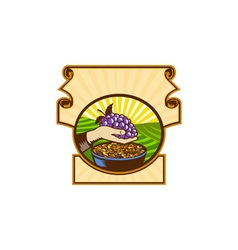 Hand Holding Grapes Raisins Crest Woodcut vector