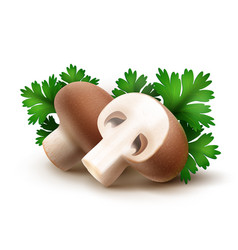 heap of fresh whole and sliced half brown vector image
