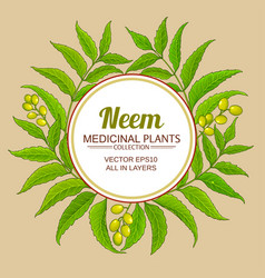 Neem branches frame on color background vector