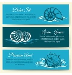 Seashell frame banners vector image