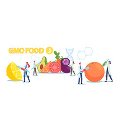 Genetically modified food and agriculture crop vector