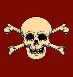 human skull with crossbones design element vector image