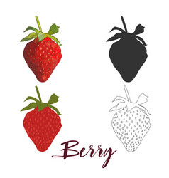 juicy strawberries isolated on white background vector image