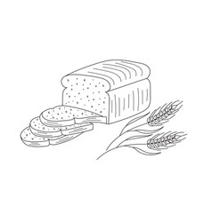 sliced bread vector image