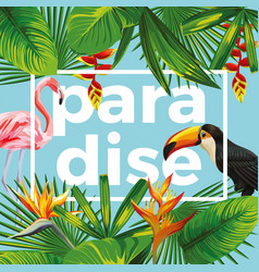 Slogan paradise toucan flamingo tropical leaves vector