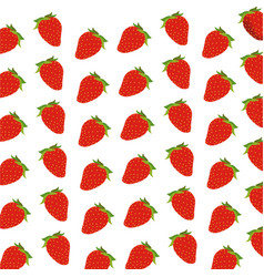strawberry fruit harvest fresh seamless pattern vector image