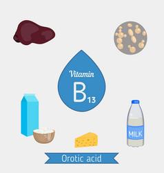 Vitamin b13 or orotic acid infographic vitamin vector