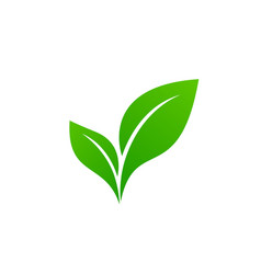 abstract green leaf logo icon design vector image
