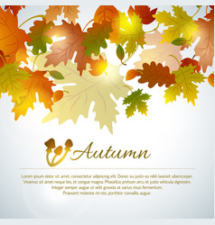 autumn mushroom leaves background vector image