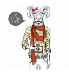 Hipster animal ram or mouflon with photo camera vector