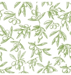 Olive fruit sketches seamless pattern background vector image