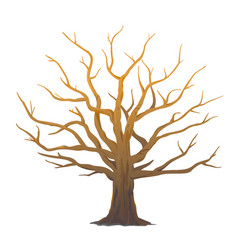 one big oak tree without leaves isolated vector image