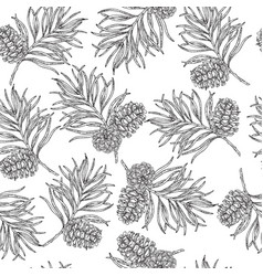 seamless pattern with hand drawn pine cones and vector image
