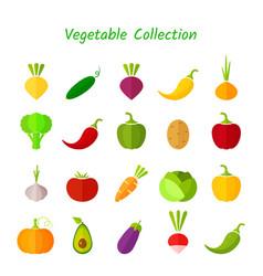stylish design vegetable isolated icon set vector image