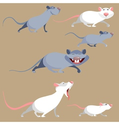 Cartoon funny rats in various poses vector