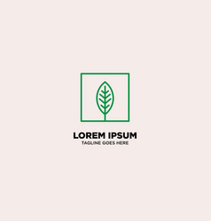Box with leaf nature monoline logo template vector