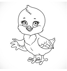 cute bachick shows a side outlined for vector image