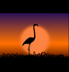 Flamingo in sunset black silhouette vector