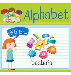 Flashcard letter B is for bacteria vector