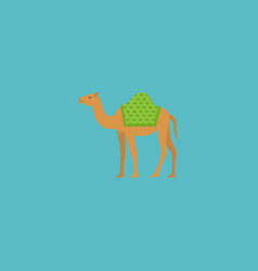 flat icon camel element of vector image