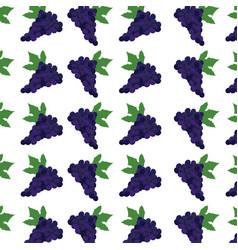 grape fruit harvest fresh seamless pattern image vector image
