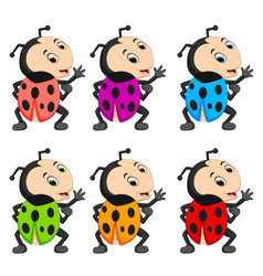 ladybug with different facial expressions vector image