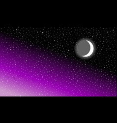 Month in the starry night sky vector
