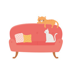 Stay at home sofa with cats and cushions isolated vector