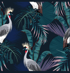 Tropical night vintage wild birds pattern vector