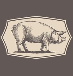 Vintage style pig emblem vector