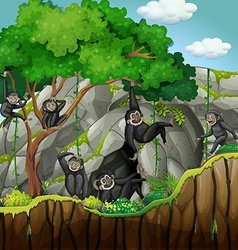 Group of gibbons climbing the tree vector image vector image