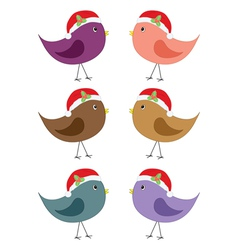 birds in Santa hats vector image