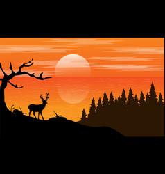 Deer sillhouette landscape vector