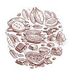 Hand drawn cocoa beans chocolate design doodle vector