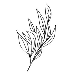 hand drawn modern flowers drawing and sketch vector image