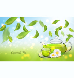 procurement for the brochure of chamomile tea with vector image